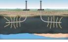 Oil revolution.jpg
